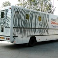 Vehicle Conversion - Grey Zebra 2
